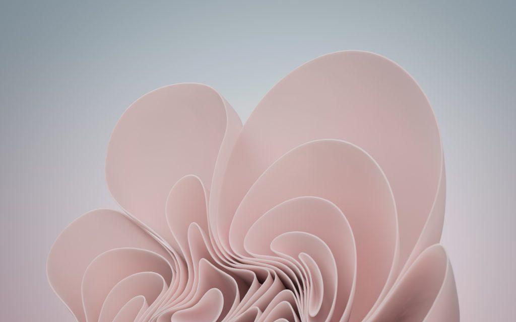 Windows 11 Download Pink Wallpaper